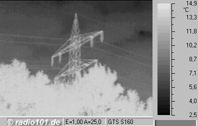 powerline + trees thermographic / thermal picture